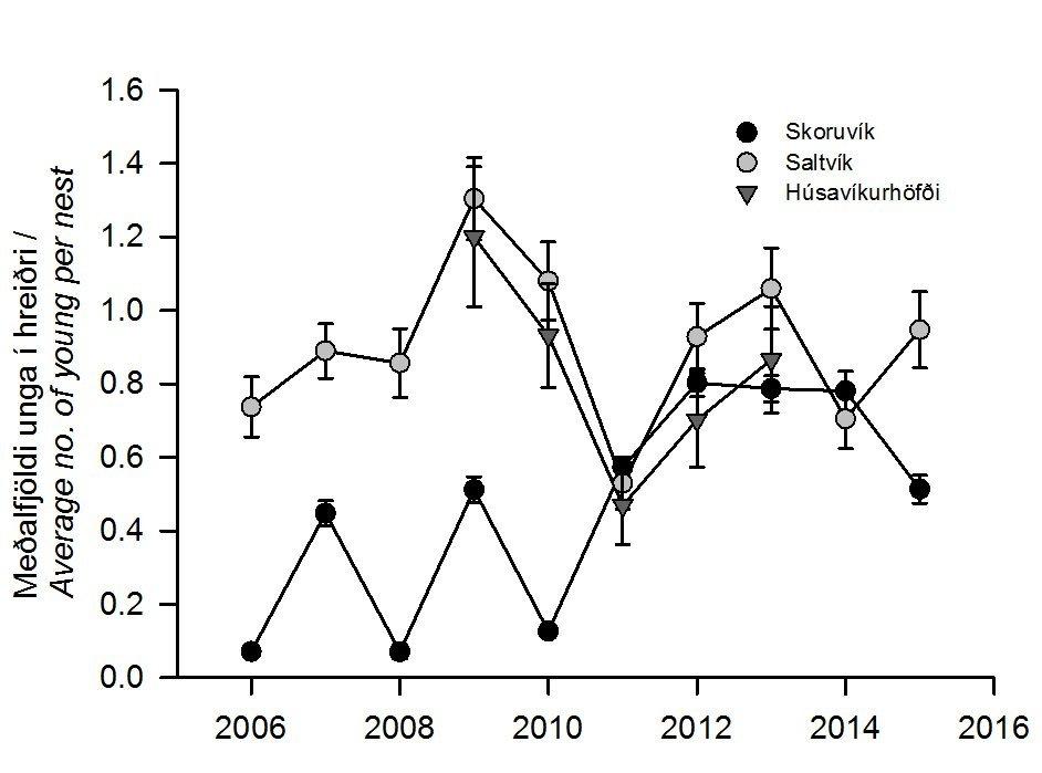 5. mynd. Breytingar á afkomu ritu í Skeglubjörgum við Saltvík og Húsavíkurhöfða á Skjálfanda sem og Skoruvíkurbjargi 2006-2015. Fjöldinn er sýndur sem meðalfjöldi unga í hreiðri á hverjum stað með 95% öryggismörkum. Figure 5. Average number of young Black-legged Kittiwakes per nest at three colonies in northeast Iceland during 2006-2015, shown with 95% confidence limits.