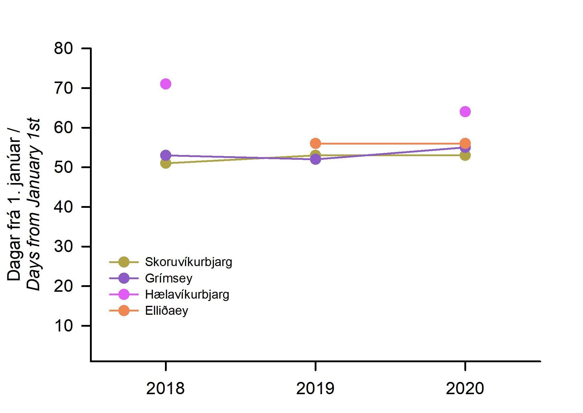 3. mynd. Komutími rita á varpstað í fjórum björgum umhverfis landið 2018-2020. Komutími er sýndur sem fjöldi daga frá 1. janúar (dagur 1 = 1. janúar).