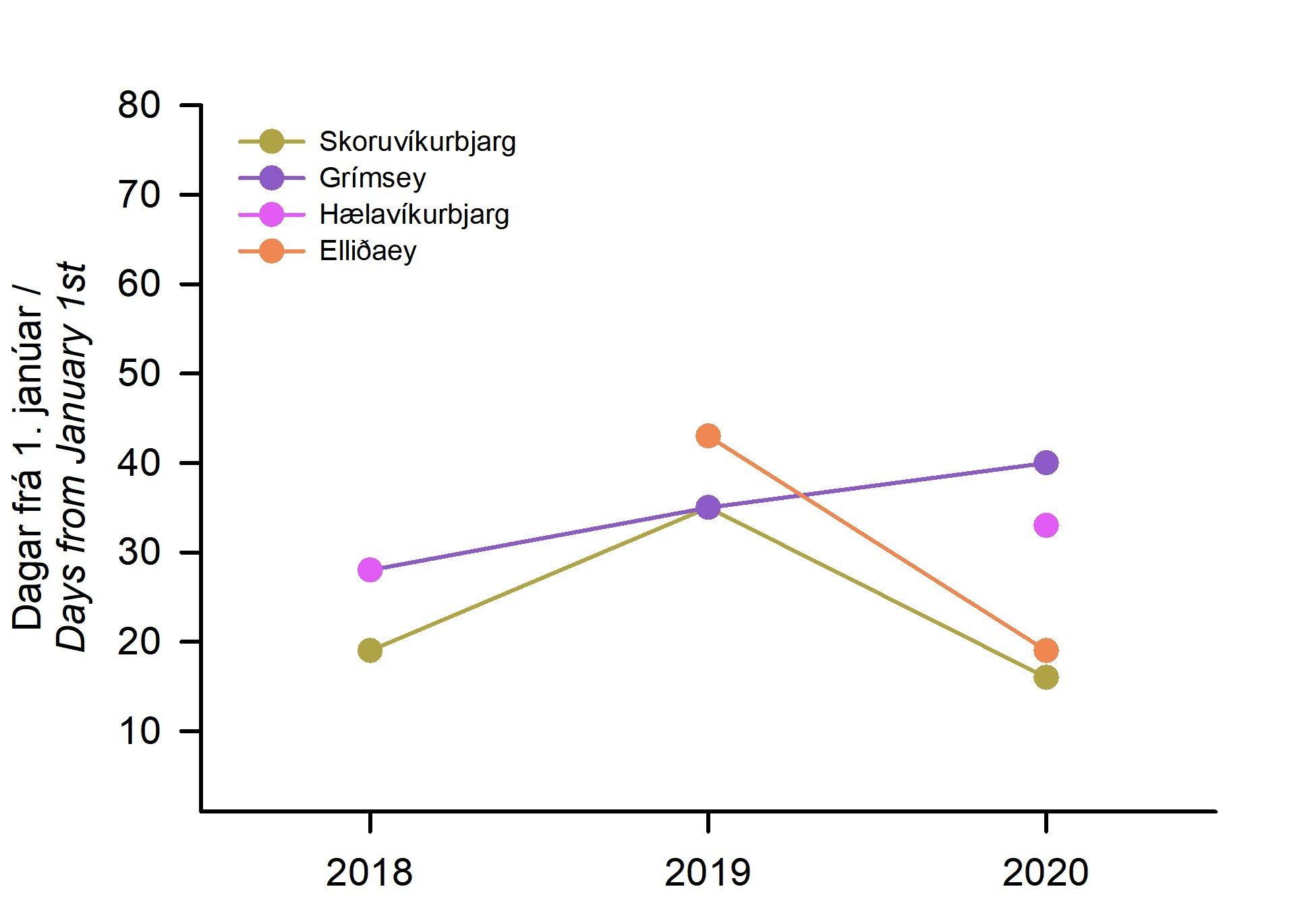 1. mynd. Komutími svartfugla á varpstað í fjórum björgum umhverfis landið 2018-2020. Komutími er sýndur sem fjöldi daga frá 1. janúar (dagur 1 = 1. janúar).